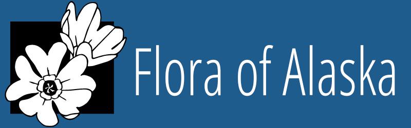 Flora of Alaska